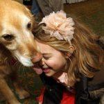 狗狗心声:陪伴是最长情的告白