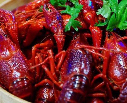 风暴来袭 看清鲜龙虾给味蕾带来的十足诱惑