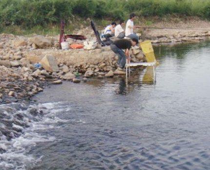这几个条件对钓鱼非常有利,尤其是夏季