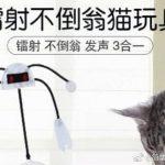 只要4招!给猫咪一个凉爽的夏天~~
