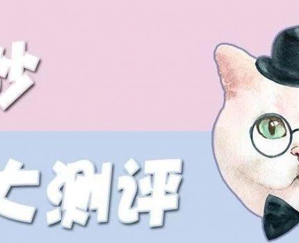 猫砂测评|猫砂那么多,该选哪种好?