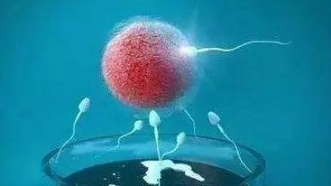 HIV女方阳性家庭如何生育健康宝宝?