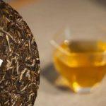 【兴海秘笈】助你轻松购买普洱茶