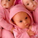 多胞胎你了解多少