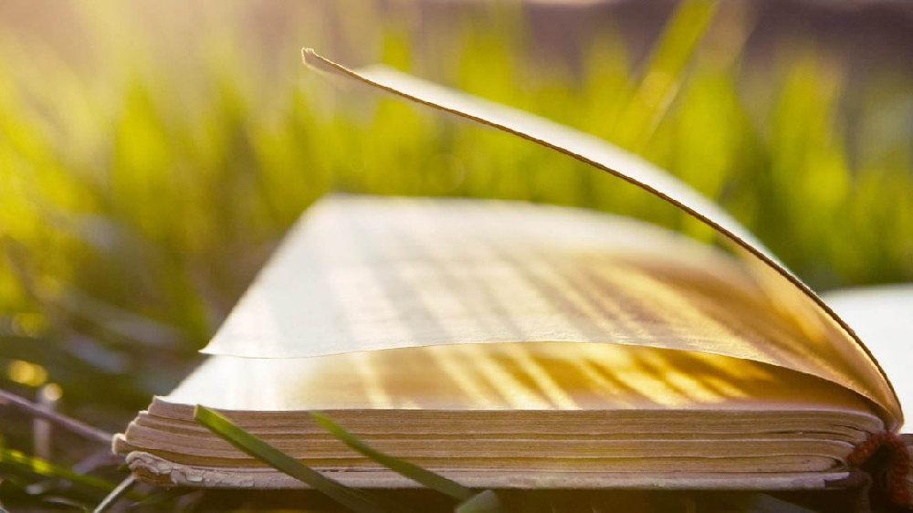 每日阅读时间