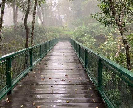 每天给自己留出1小时去走路,走出健康