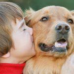 我很爱我的狗狗,却从不反对他人吃狗肉