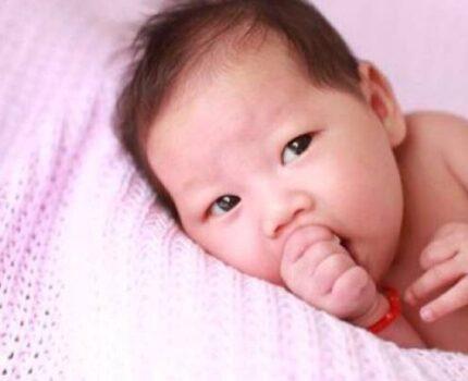 从什么时候开始给宝宝早教最好?