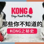 趣味分享 丨原来KONG 是这样来的!