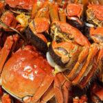 啊又到吃螃蟹的季节了!