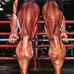 怎样进行一次超高效率的腿部训练?