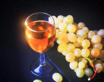 葡萄酒不仅有酒精,它还有更丰富的内涵