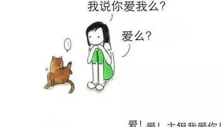 真人演绎养猫和养狗的区别,你看像不像?