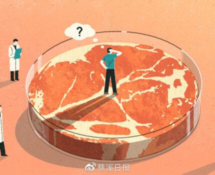 """猪肉贵吃""""素肉""""?人造肉食品可不少"""