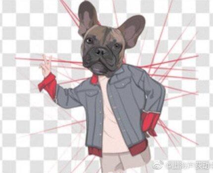 如何让狗狗学会上厕所?[