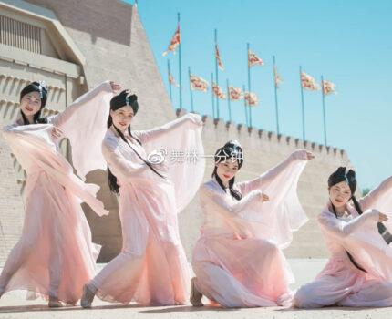 干货 | 中国舞基本功之脚与腿部动作详解