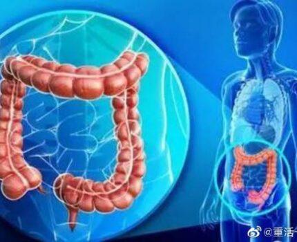 吃肉吃出了结直肠癌