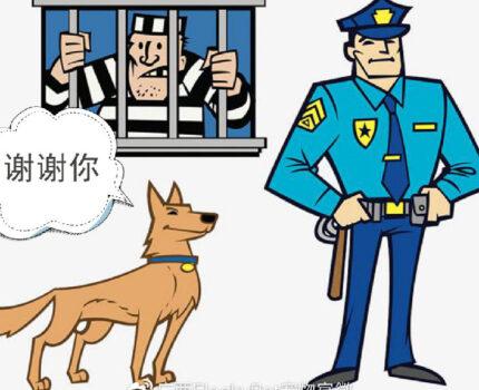 打狗犯法你怕了吗?
