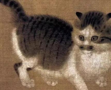 宋朝的猫,太心机了点