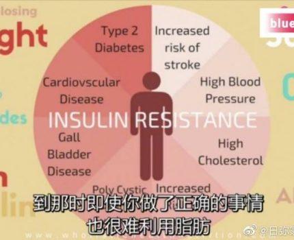 减肥失败的本质:控制胰岛素!