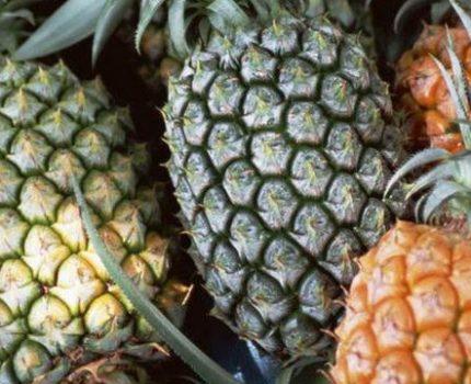 夏天吃菠萝,这3种大家尽量不要去买!水果摊主:我自己都不吃