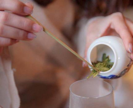 为什么老白茶中的陈年银针贵的惊人?
