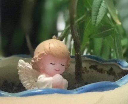 安安宝贝出生第24天