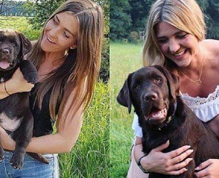 十年之后和狗子在同一地方拍照,没想到却令人泪奔!