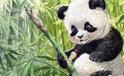 """乐山大街上,唐朝""""国宝""""扮演大熊猫上街溜达,也太可爱了"""