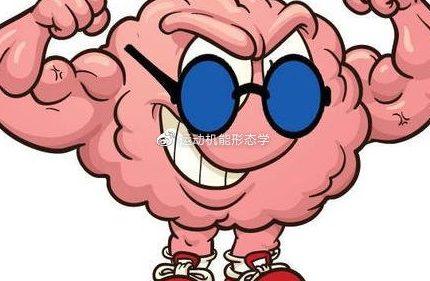 科学健身-神经对健身训练的调节和适应(8):神经肌肉激活