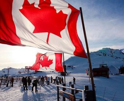 赴加拿大生孩子费用详解,竟然要花这么多钱?
