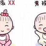 泰国试管婴儿生男孩小秘密,小帕讲给你听!