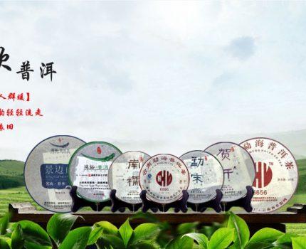 绿轩茶叶|一波十三年精心仓储普洱茶分享,给您满满的味蕾享受!