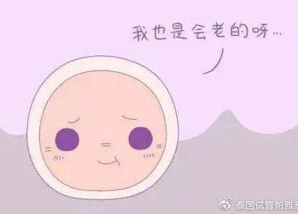 卵子质量差还能做泰国试管婴儿吗?
