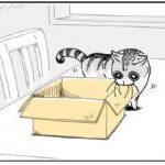 网友绘制的养猫日常,太真实了,就是我和喵主子现状!