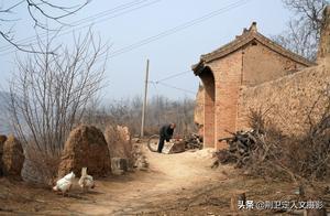 山西农民大叔家的中华田园犬,能看家护院守半村,被称为功臣犬
