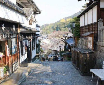 现代新赛道:高考日语中的名词整理(三)
