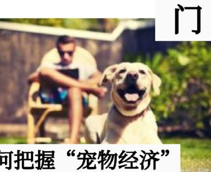 门店指导,揭秘宠物消费背后的4条销售逻辑