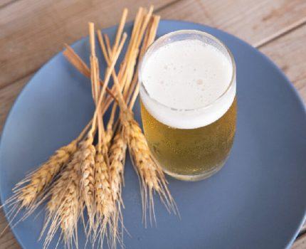 你知道白酒、红酒、啤酒这些酒类哪个更伤肝吗?带你了解酒的酿造