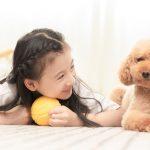 《二十不惑》自我为中心的孩子招人烦,孩子养宠物,意义你知道吗