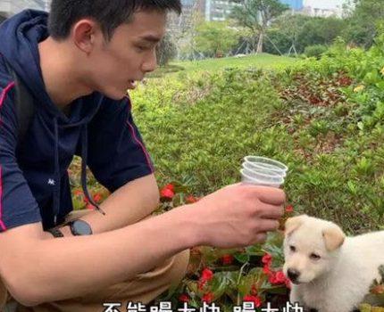 """""""小北""""和吴磊在《穿越火线》拍摄现场相遇后,被宠上了天"""