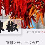 中国,谁最辣?