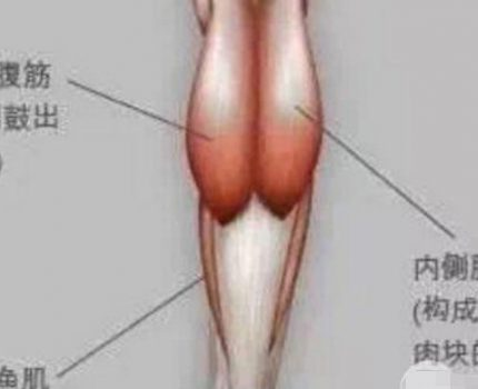 怎么才能让小腿变细?3种类型对症下药,超全盘点瘦腿方法!