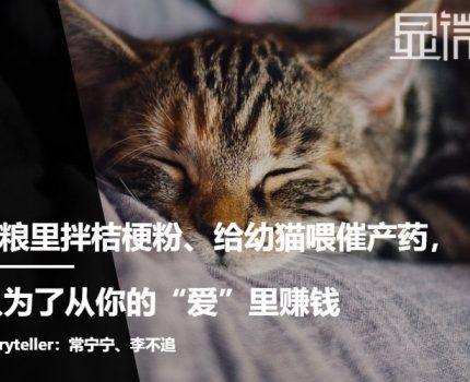 """在猫粮里拌秸秆粉、给幼猫喂催产药,我要从你的""""爱""""里赚钱"""