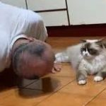 """曾呛""""要把猫丢下去"""",如今爸爸却跪姿趴地""""向喵孙报告行程"""""""
