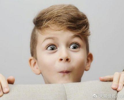 鼠宝宝起名取名:姓李的男孩,简单好听的名字精选