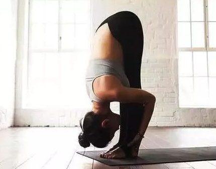 瑜伽入门体式高清动图,每天10分钟,练就马甲线!