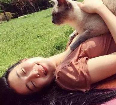 中国的猫正在征服美国人,在中国街头流浪,到了美国变成天价