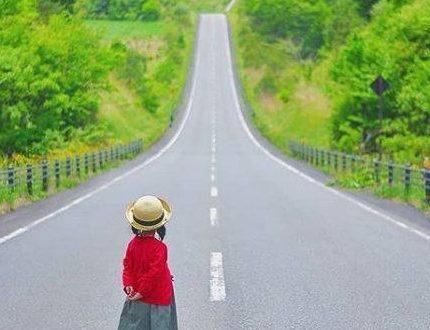 龙生龙,凤生凤,自己不具备的优势特点,凭什么要孩子必须具备?