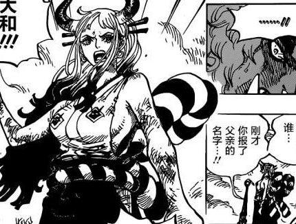 海贼王994话汉化,凯多恢复人类形态,心疼小菊永远失去手臂